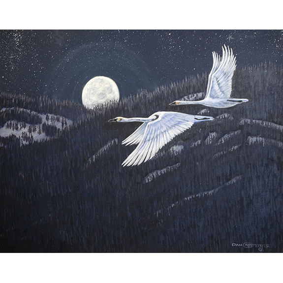 Night Flight Over the Cabinet Mountains - Original